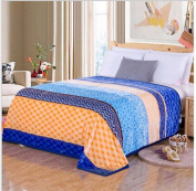 WYFC Winter thick warm bed blanket gift blanket warm soft lightweight bed blanket, camping blanket