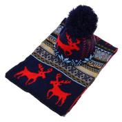 Women Hat + Scarf Suit, Xinantime Crochet Hat Fur Woollen Knit Beanie Raccoon Warm Caps+Scarf Shawl Suit