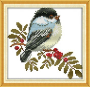 Cross Stitch Embroidery Starter Kit including 14 Count 18cm x 18cm classic reserve Aida coloured threads and tools Little Bird