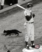 Ron Santo Chicago Cubs 1969 MLB Photo 8x10