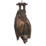 38cm Hanging Vampire Bat Prop Realistic Rubber Halloween Decoration