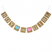 Veewon Boy Or Girl Baby Shower Banner Gender Reveal Bunting Flags Hanging Party Decoration Favour