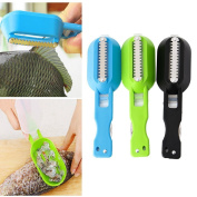 ULOOIE Kitchen Tool Gadgets Fish Brush Skin Scraping Fish Scale Brush Graters Fast Remove