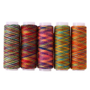 Demiawaking 5Pcs Sewing Threads Rainbow Polyster Spools Hand Sewing Thread Embroidery Spool Thread for Sewing Machine