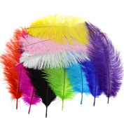 10PCS Multi Colours Arts Crafts Ostrich Feathers Fluffy 25cm - 30cm Long