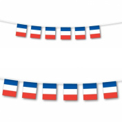 France Bunting Flag 3M 10 Flags,France Rugby Flag