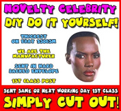 DIY - Do It Yourself Face Mask - Grace Jones May Day Bond Celebrity Face Mask