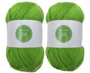 Apple Green House of Cecilia 2 x 100g balls 100% acrylic knitting yarn crochet crafts