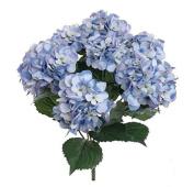 8m 7-Heads Bounquet Artificial Hydrangea Flower Home Wedding Decoration Silk Fake Dried Hydrangea, Blue