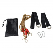 Tree Swing Hanging Strap Kit 1.8m Holds 300kg Adjustable Rope With 2 Strap & Carabiner Hook For Swings And Hammocks by ToySharing