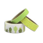 3 masking tapes 5 m - Cactus