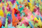 ColorMarathon(TM) Premium Quality HOLI Colours - 5.4kg (6 colours X 5.4kg Ea colour) RED, YELLOW, PINK, BLUE, GREEN, AND PURPLE - . by ColorMarathon
