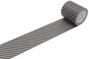 MT Casa Deco 50 mm Stripe Washi Masking Tape - Black