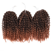 Silike Ombre Marlybob Kinky Curl (3 Bundles/pack) 20cm Curly Wave Crochet Braiding Hair Extension