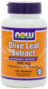 Olive Leaf Extract 500mg/6%, 120 Vcaps