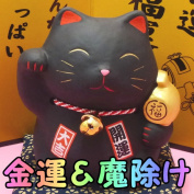 Luck with money money box MONEY comes! Cat (black) /
