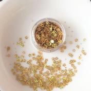 Sansee Mixed Flake Chunky Glitter Festival Cosmetic Glitter Pots Nail Face Eye Shadow Tattoo Festival Body Dance Party