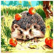 5D Diamond DIY Hedgehog Painting Cross Stitch Needlework Craft Decor Diamond Painting Kits