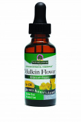 Nature's Answer Mullein Flower Oil, Extract 30ml