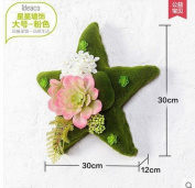 SU@DA Creative home living room wall decoration walled pastoral simulation plant grass pendant free combination , large pink star
