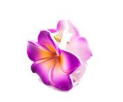 Plastic Crab A Hibiscus Flower Hair Clip – 6 cm, violet – Hair Accessory