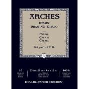 Arches 1795114 Drawing Paper, Cotton, Beige, 23 x 31 x 1 cm