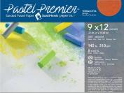 Pastel Premier Paper Terracotta 9X12 8/Sheets
