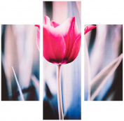 Group Asir LLC 251TRE1948 Three Art Decorative Painting MDF, Multi-Colour