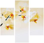 Group Asir LLC 251TRE1949 Three Art Decorative Painting MDF, Multi-Colour