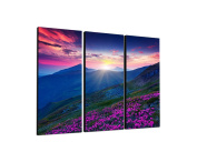 Rhododendron Colour 3-Piece Wall Picture on canvas and stretcher frame ready to hang – Our Glorious Nature Landscape Canvas Picture Feature [Ready to Detailed Print up to 100 Megapixels.