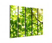Baumbild Green Leaves release 5 x 30 x 120 CM XXL extra Large 5.Piece Picture on Canvas and Stretcher Frame, Ready to Hang-Our Images on Canvas captivate with their unusual formats and extremely detailed print from up to 100 Mega Pixel High Resolution ..
