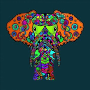 Colour-in Elephant 3 Stretched, 120x120cm ***