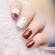 EchiQ Coffe Brown French False Nail Light Grey White with Gold Revits Fake Nails Squoval Full Acrylic Nails Tips