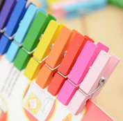 Liroyal 3.5cm coloured wooden clip 100pcs