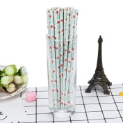HLHN Flower Printing Drink Paper Straws Decorative Drinking Birthday Party Theme Festivals 25PCS
