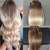 Full Shine 36cm 7 Pieces per Set 120 Gramme Remy Human Hair Clip in Weft Hair Extensions Colour #6 And Colour #613 Blonde Ombre Clip in Hair Extensions