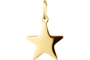 Zag Jewellery Star Pendant, with Yellow Gold Chain Sold Separately