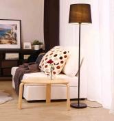 Adjustable Metal floor lamp, Bedroom bedside lamp Living room lights Modern simplicity Nordic E27 * 0.3m switch Elegant