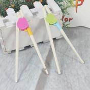 ReadiMax£¨TM)new 2016 pretty cute raccoon children chopsticks gift Kids Children Learning Training Designed Chopsticks
