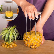 ReadiMax£¨TM)1PCS High Quality Fruit Peeler Pineapple Peeler Easy Slicer Cut Device Peeling Knife Cooking tools