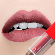 CHshe Pudaier Cupid Series Lip 18 Nude Colours Cosmetic Beauty Lip gloss, Matte long lasting Non-stick Soft texture Highly Saturated And Pigmented Lip Make Up Tool