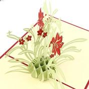 Pinzhi 3D Pop Up Cards Valentine Lover Happy Birthday Anniversary Greeting Card Hot x 1