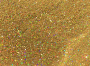 Holographic Green Gold Glitter Powder Ultra Fine Florist Nail Art Crafts Professional Quality Coverage 100g
