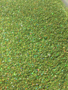 Holographic Apple Green Glitter Powder Ultra Fine Florist Nail Art Crafts Professional Quality Coverage 100g