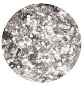 Brilliant Glitter Holo silver 9g