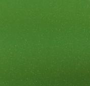 100G FINE GLITTER MATT IRIDESCENT HOLOGRAPHIC WINE GLASS CRAFT NAIL ART DUST