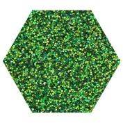 10G LIME HOLOGRAPHIC GLITTER ULTRA FINE WINE GLASS ART AND CRAFT NAIL ART SCRAPBOOKING NON TOXIC