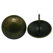 LEORX 4.1cm Antique Brass Push Pins Round Large Head Nails - 20pcs