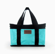 Travel Picnic Bag,Tefamore Portable Insulated Thermal Lunch Carry Tote