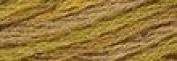 P5 Tarnished Gold - Valdani Hand Overdyed Floss